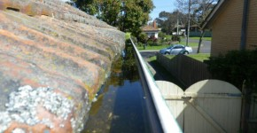 Gutters holding water